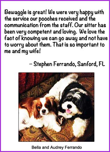Pet Sitter in Sanford