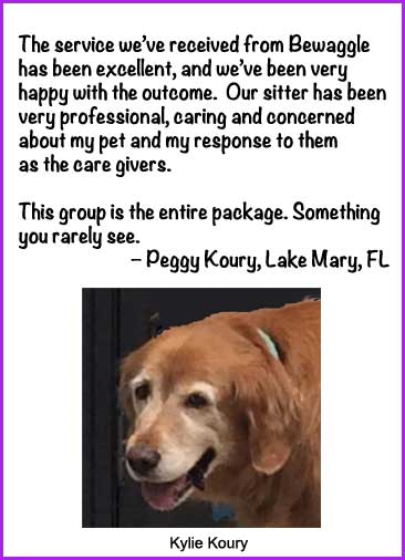 Pet Sitter in Lake Mary